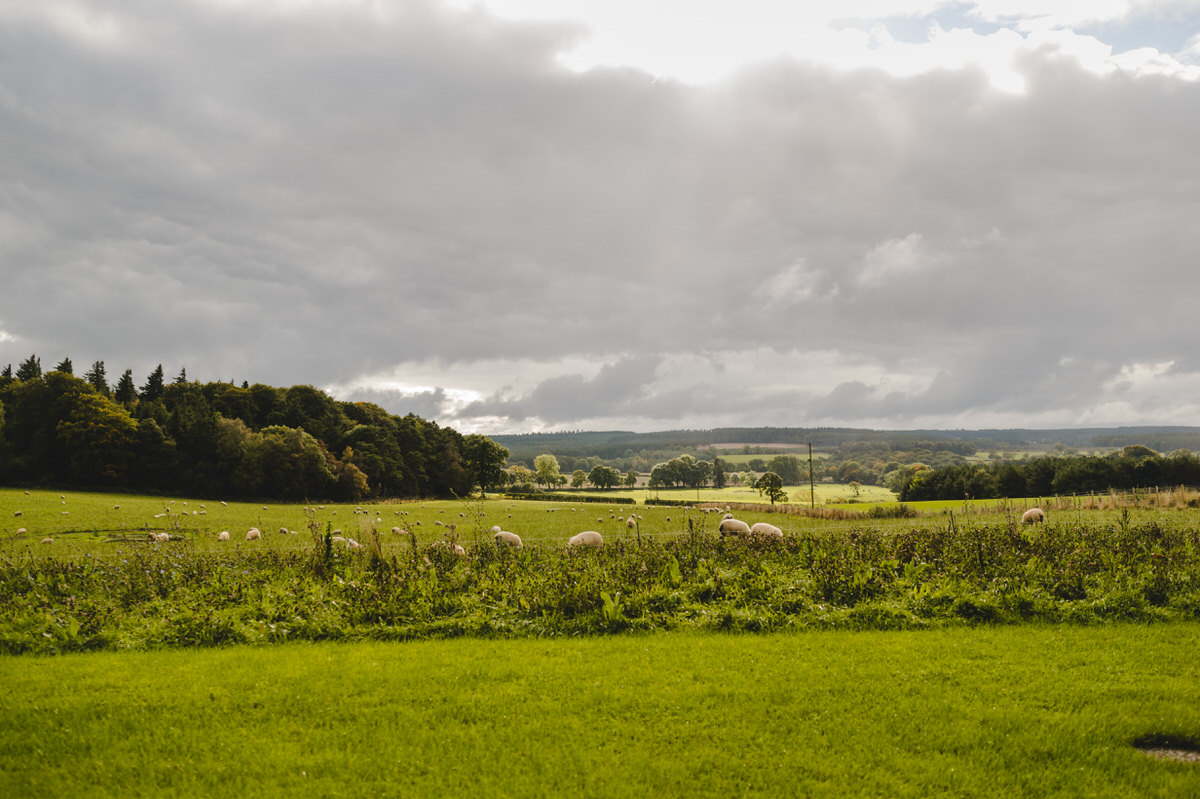 stunning tyne valley views